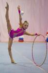Соревнования по художественной гимнастике 31 марта-1 апреля 2016 года, Фото: 19