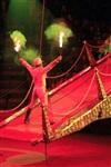 Цирк «Вива, Зорро!» в Туле , Фото: 81