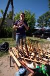 В Тульской области прошел фестиваль крапивы, Фото: 1