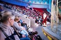 В Тульском цирке родился тигролев, Фото: 9