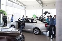 В автосалоне «Арсенал-Авто» прошла презентация новой модели ŠKODA Rapid , Фото: 5