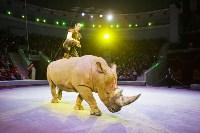 Туляков приглашают на новогоднее представление «Ёлка в цирке», Фото: 70