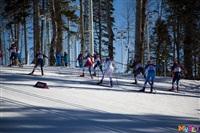 Состязания лыжников в Сочи., Фото: 57