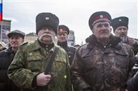 Митинг в Туле в поддержку Крыма, Фото: 51