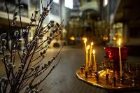 Вербное воскресенье 2020: тульские храмы опустели, Фото: 28