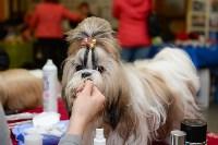 """Выставки собак в ДК """"Косогорец"""", Фото: 19"""