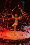 В Тульском цирке прошла премьера аква-шоу, Фото: 78