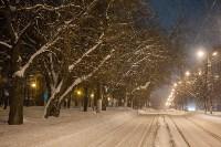 Сказочная зима в Туле, Фото: 28
