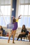 Спортивная гимнастика в Туле 3.12, Фото: 125