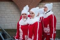 В Тульском кремле открылась новогодняя елка, Фото: 30