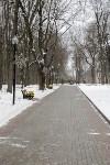 Рогожинский парк, зима 2019, Фото: 9