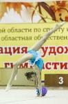 Художественная гимнастика. «Осенний вальс-2015»., Фото: 126