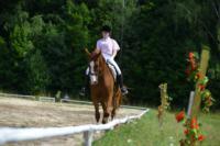 В Ясной поляне стартовал турнир по конному спорту, Фото: 37