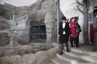 Новое здание тульской экзотариума, Фото: 5