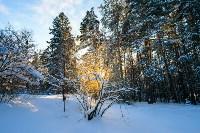 Снежное Поленово, Фото: 32