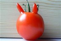 Овощи и фрукты, которые забыли, что они овощи и фрукты, Фото: 8