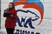 Митинг «Единой России» на День народного единства, Фото: 10