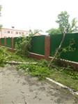 Ураган в Плавске, Фото: 6