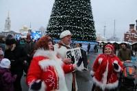 На площади Ленина в Туле открылась новогодняя ярмарка , Фото: 7