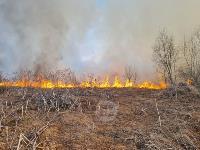 В Федоровке огонь с горящего поля едва не перекинулся на дома, Фото: 4