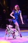 Цирковое шоу, Фото: 46
