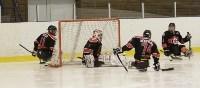 «Матч звезд» по следж-хоккею в Алексине, Фото: 4