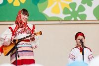 День меда-2015, Фото: 25
