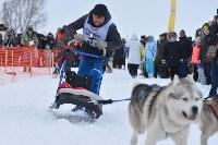 Праздник северных собак на Куликовом поле , Фото: 79