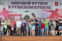 Матч Испания - Россия в Тульском кремле, Фото: 81