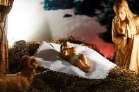Католическое Рождество в Туле, 24.12.2014, Фото: 91