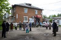 В Тульской области Богородицкий район атаковали мошки, Фото: 1
