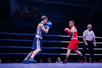 В Туле прошли финальные бои Всероссийского турнира по боксу, Фото: 11