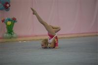 IX Всероссийский турнир по художественной гимнастике «Старая Тула», Фото: 28