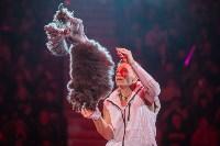 Туляков приглашают на новогоднее представление «Ёлка в цирке», Фото: 19