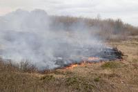 В Мясново загорелось поле, Фото: 10