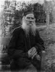 Толстой покупал березы на гонорар от «Войны и мира», Фото: 12