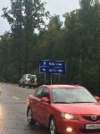 В Тульской области столкнулись две иномарки: есть пострадавшие, Фото: 1