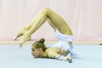 Кубок общества «Авангард» по художественной гимнастики, Фото: 47