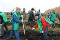 В музее-заповеднике «Куликово поле» высадили 6 тысяч деревьев, Фото: 9