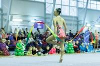 Кубок общества «Авангард» по художественной гимнастики, Фото: 12