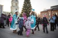 В Тульском кремле открылась новогодняя елка, Фото: 20