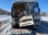 В Тульской области в ДТП с автобусом и маршруткой пострадали несколько человек, Фото: 8