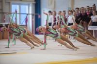 Первенство ЦФО по спортивной гимнастике, Фото: 4