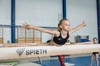 Тренировка гимнасток, Фото: 42