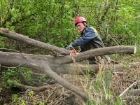 В Туле ведется расчистка Щегловского ручья от мусора, Фото: 3
