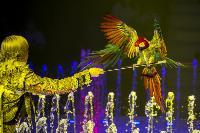 Шоу фонтанов «13 месяцев» в Тульском цирке – подарите себе и близким путевку в сказку!, Фото: 31