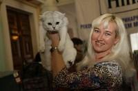 Выставка кошек. 21.12.2014, Фото: 14