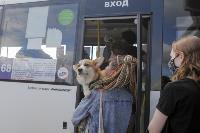 Тульские спасатели продезинфицировали автовокзал «Восточный», Фото: 51