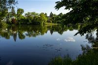 Летний день в Ясной Поляне, Фото: 39