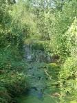 Бережок Воронки в Ясной, Фото: 39
